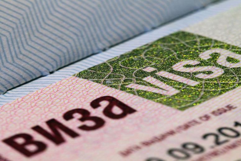 Renovación del registro y del visado