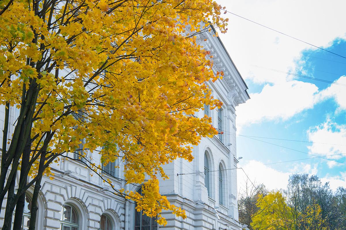 Los días de la Universidad Politécnica de San Petersburgo Pedro el Grande van a celebrarse en cuatro universidades de Brasil